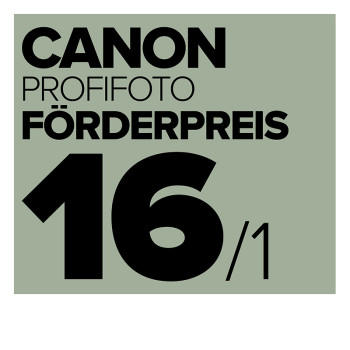 CPFP_Logo_16_kl
