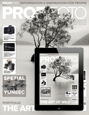 ProfiFoto E-Paper