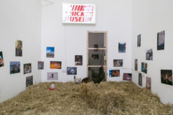 thomas-mailaender-chicken-museum-2014-site-specific-installation-presented-in-chicken-show-roman-road-london-31-may-05-july-2014