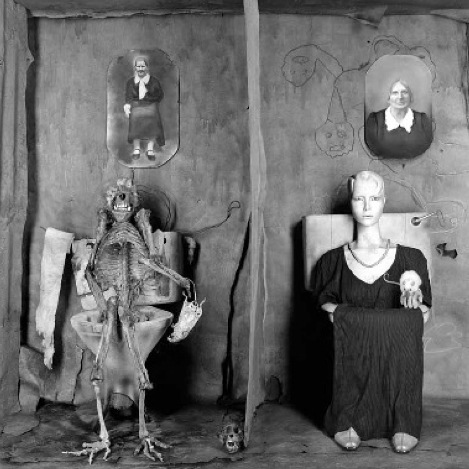 The World According to Roger Ballen: