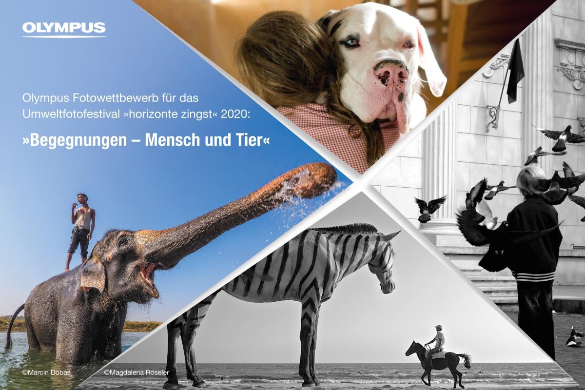 Begegnungen – Mensch und Tier